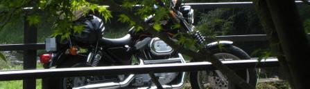 201010top2