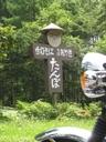Tsuyu6